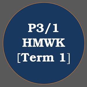 P3/1 HMWK T1