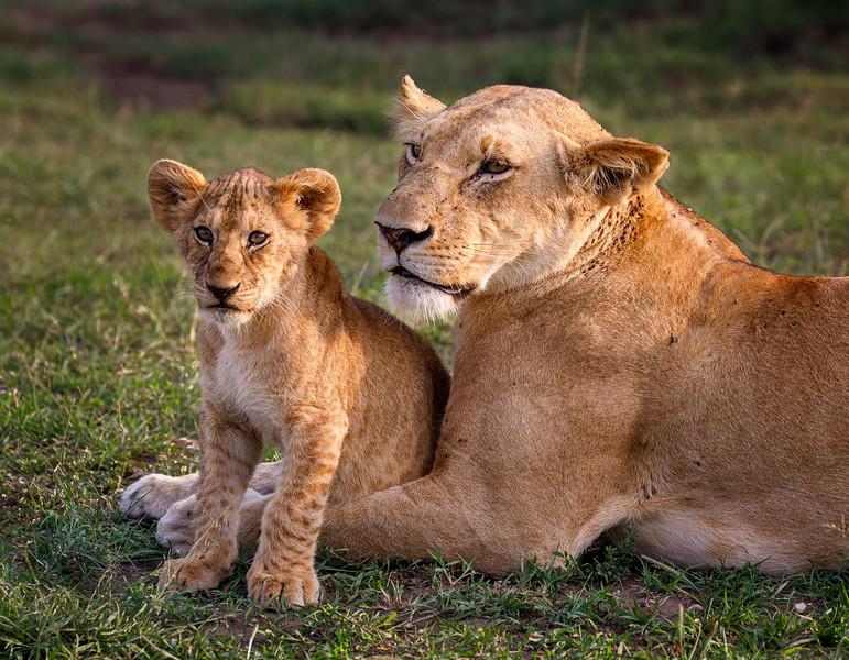 Kenya_PSokol_0619-1570.jpg