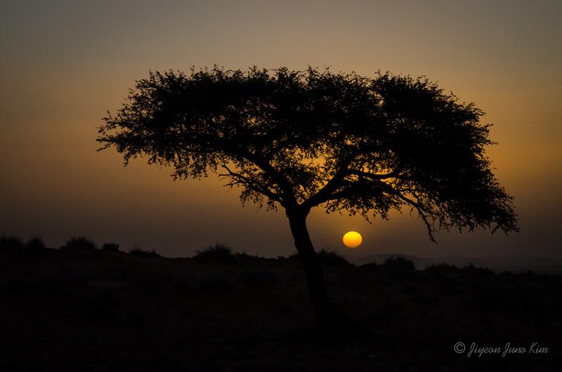 Namibia-4250.jpg