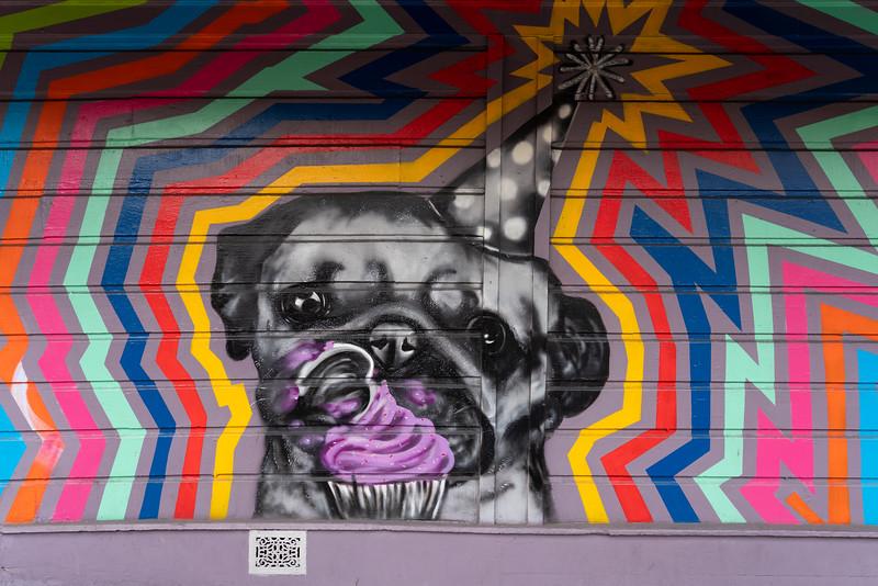 Dogs-36.jpg
