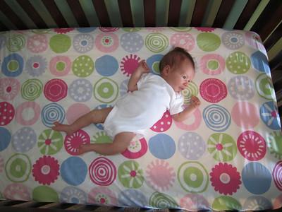 Maddie 1 Month Old