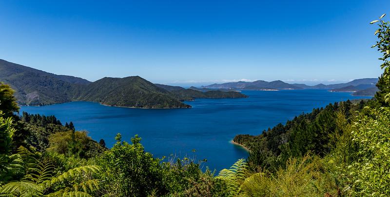 Blick vom «Totaranui Viewpoint» auf den «Endeavour Inlet»