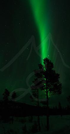 The Great Aurora Borealis