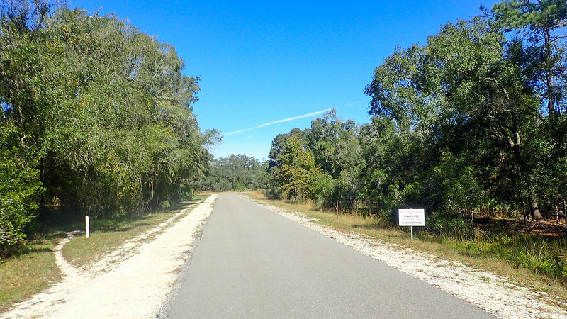 Stretch of paved bike path with side trail on left