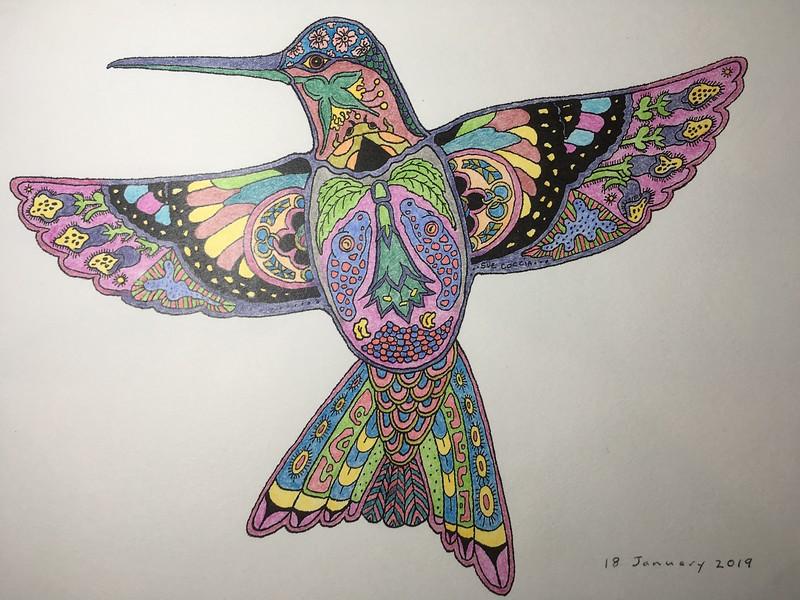 Lizard's Hummingbird