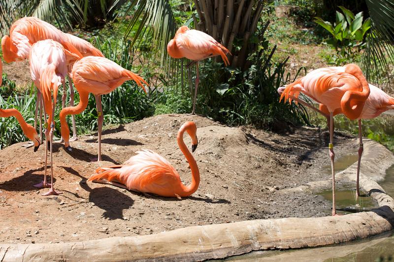 Zoo_Trip_10.jpg