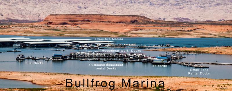 Summer 2014 Bullfrog - Lo-Res uploads for blog