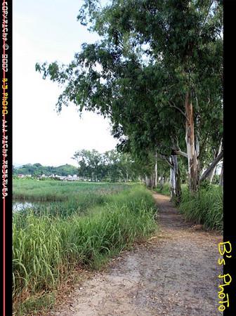 20070729 - Nam Sang Wai