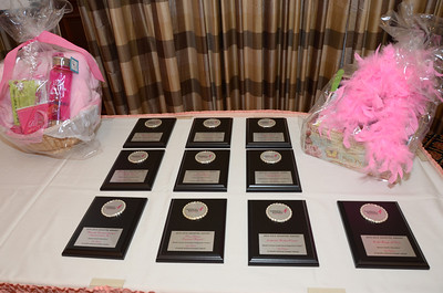 2014  In the Pink Reception