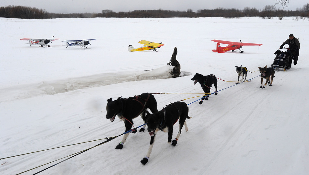 . Musher Ken Anderson arrives at the checkpoint in Anvik, Alaska, during the Iditarod Trail Sled Dog Race on Friday, March 8, 2013. (AP Photo/Anchorage Daily News, Bill Roth)