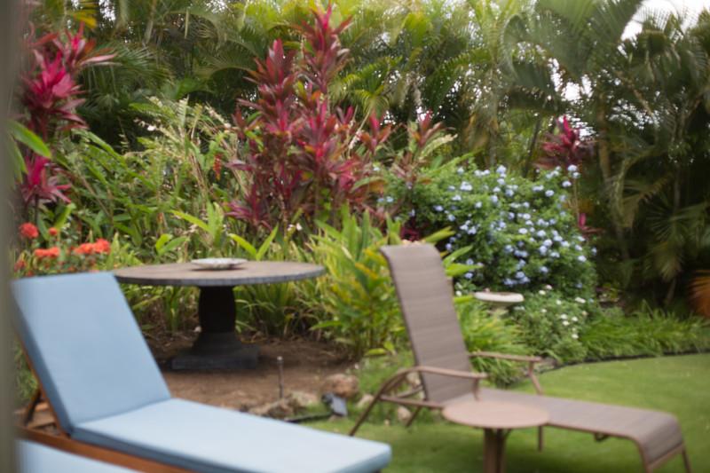 Maui-Caterina-CAM2-3rd-196.jpg