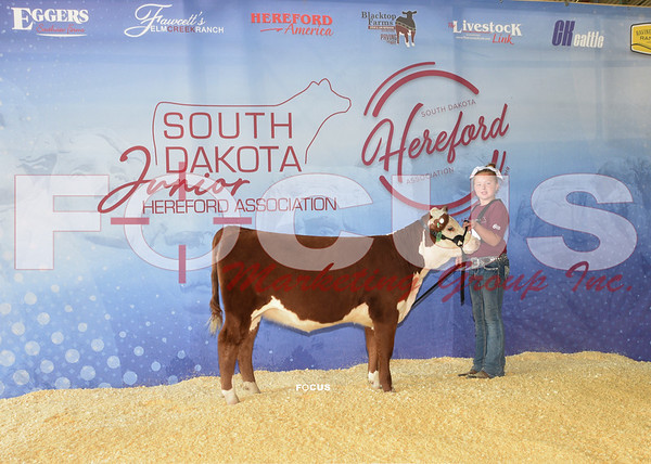 2021 SD Hereford Special & Futurity