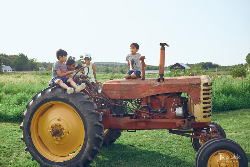 Cider Hill Farm 91.jpg