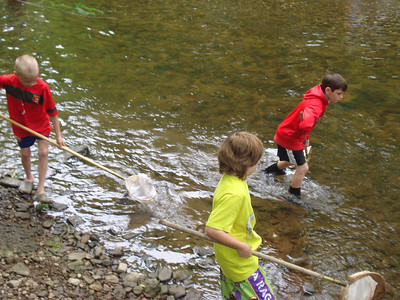 3V Creek Study with Mr. Newberger 6/1/12