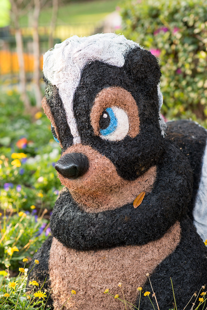 Flower the Skunk from Bambi Topiary - Epcot Flower & Garden Festival 2016
