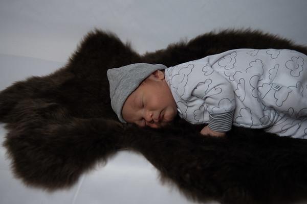 Heath Lane Newborn