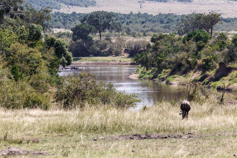 Kenya 2015-02462.jpg