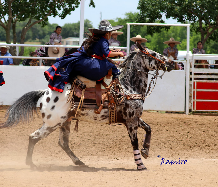 Charra on Spotted Horse IMG_0509.jpg