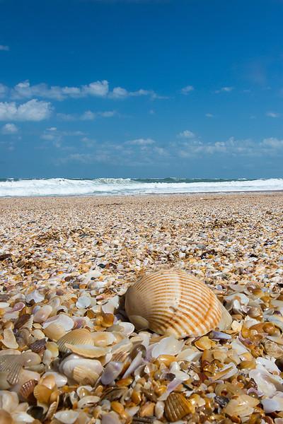 St Augustine Beach-.jpg