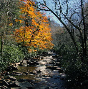 Smokey Mountain Colors