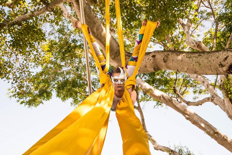 Florida Circus Freaks