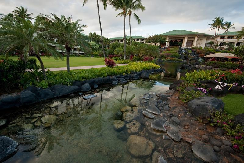 1002_Kauai_best_20.jpg