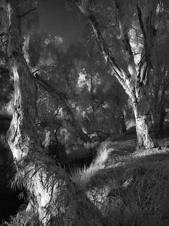 Keelbottom Creek