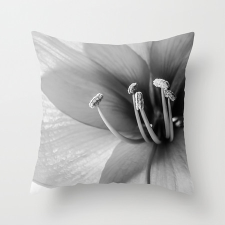 FEATURED FINE ART PHOTOGRAPHY THROW PILLOW COVERS
