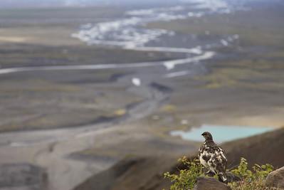 20110621 Road trip – Dzień III –Lodowiec Vatnajökull (kolejne podejście)