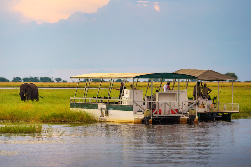 Tourists in a boat observe an elephant along the Chobe River, Botswana, Africa