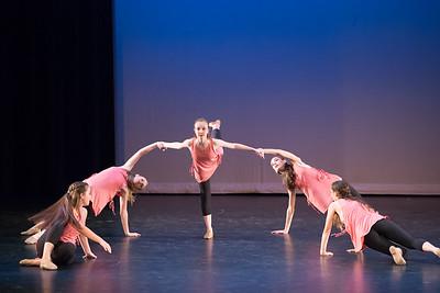 2017 LAHS Dance Show