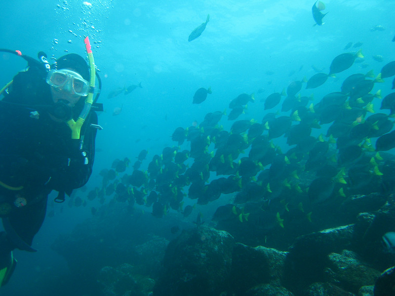 Diving in the Galapagos (327 of 392)