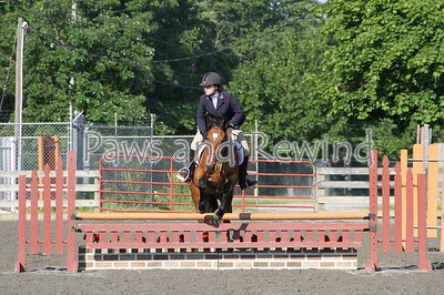 Ring III: Low Adult Hunter/Equitation