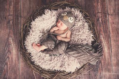 Penelope Newborn