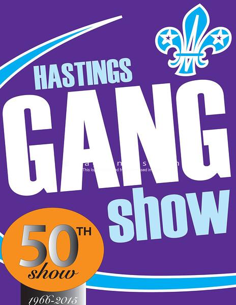 Gang Show 2015