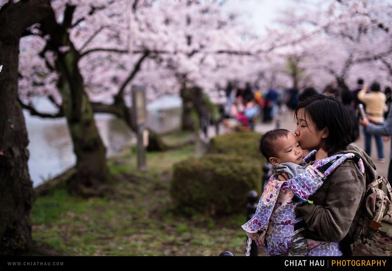 Japan_Tokyo_Apr_2016-347.jpg