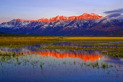 Canada, Yukon, Alaska Highway, Fall Colors,  加拿大,  育空,  秋色