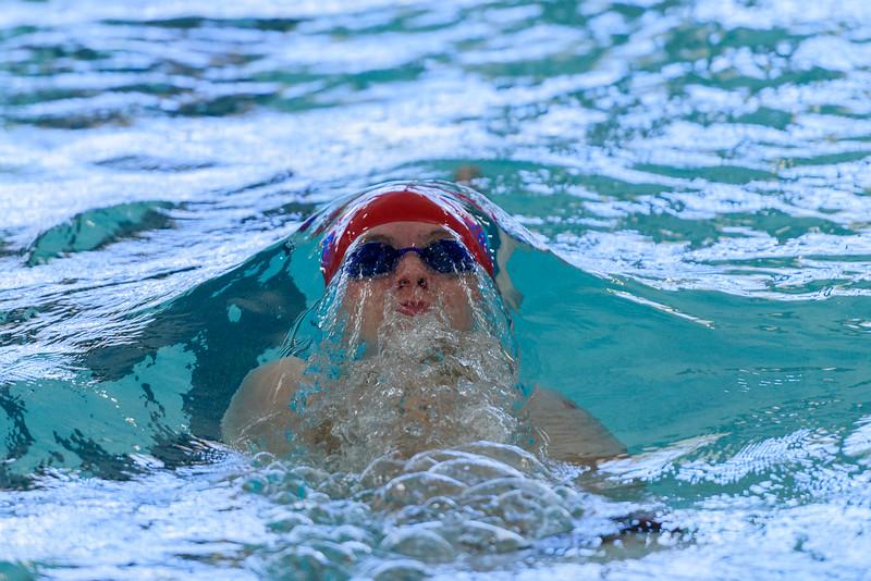 KSMetz_2017Feb10_8545_SHS Swim Centennial League Meet.jpg