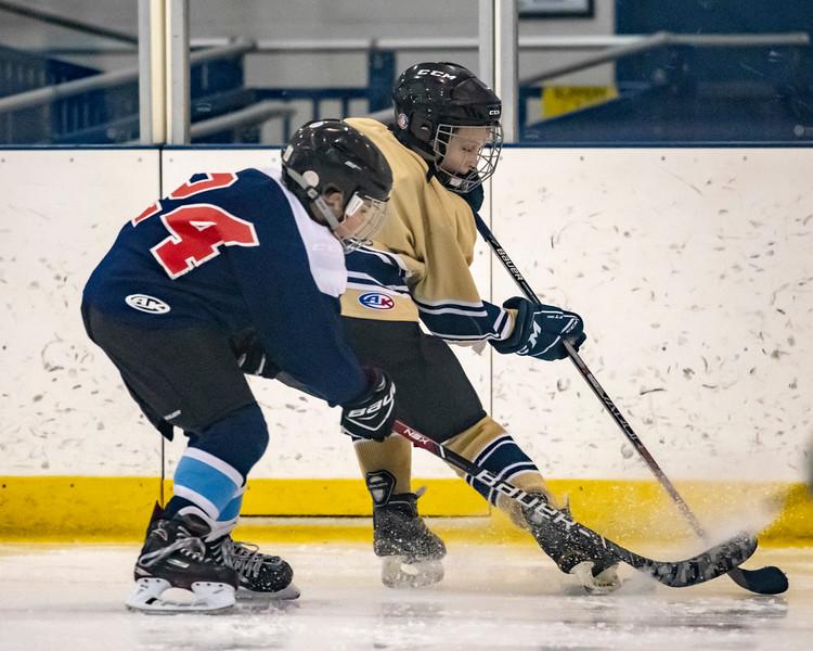 2018-2019_Navy_Ice_Hockey_Squirt_White_Team-52.jpg