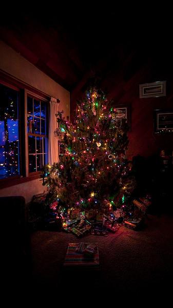 Christmas 2010 Family
