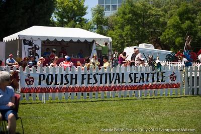 Festal Polish Festival 2014 Outdoors