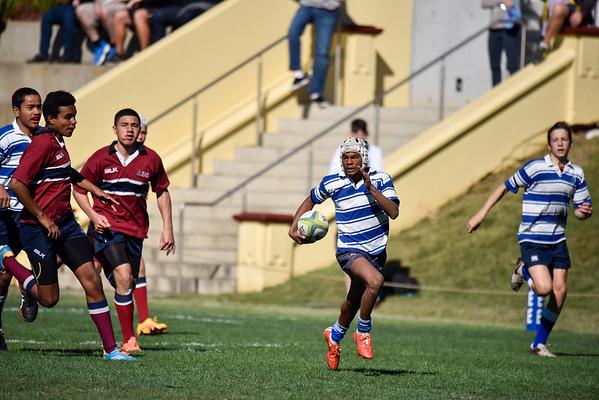 Round 7 Rugby - NC vs TSS