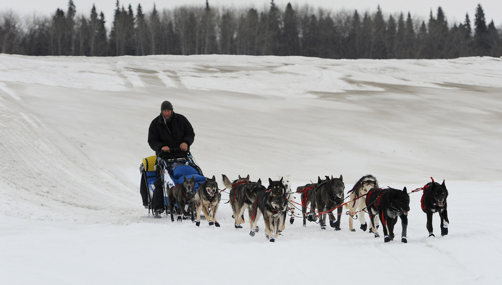 . John Baker drives his dog team up the Yukon River towards the Iditarod checkpoint in  Anvik, Alaska on Friday, March 8, 2013,  during the Iditarod Trail Sled Dog Race. (AP Photo/Anchorage Daily News, Bill Roth)