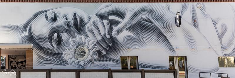 Tucson Barrio & Murals -- 2020