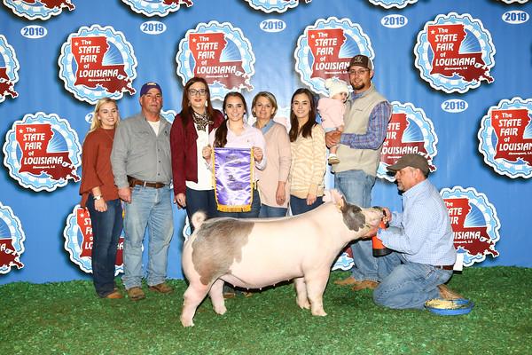 Breeding Swine