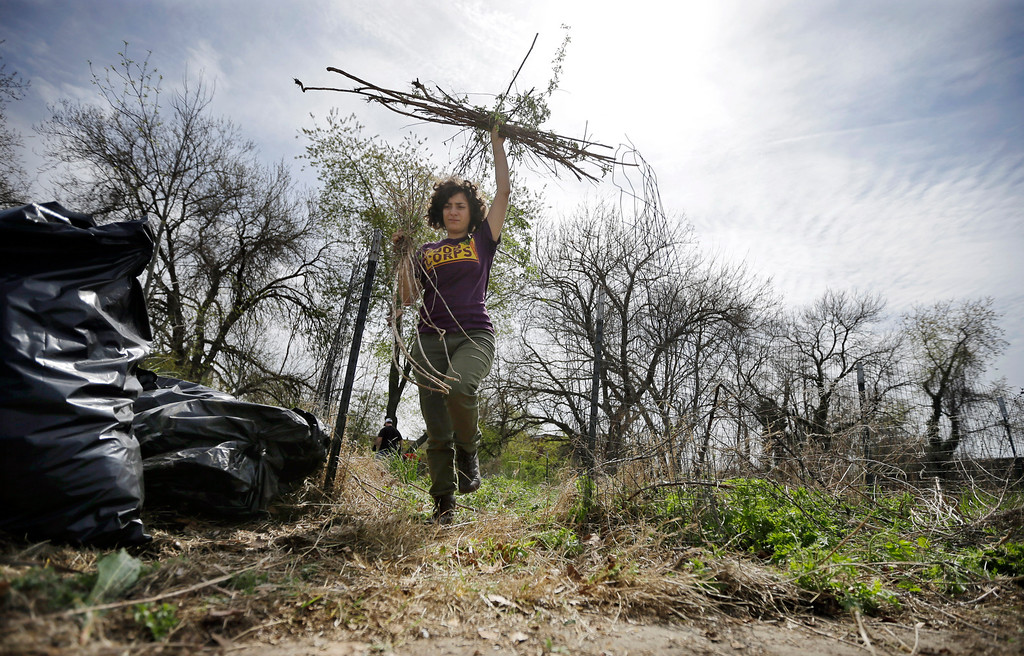 . Volunteer Lauren Landov carries debris from an overgrown empty lot as part of an Earth Day clean-up effort in Camden, N.J., Tuesday, April 22, 2014. The Earth Day events celebrated on April 22 promote a sustainable and clean environment. (AP Photo/Mel Evans)
