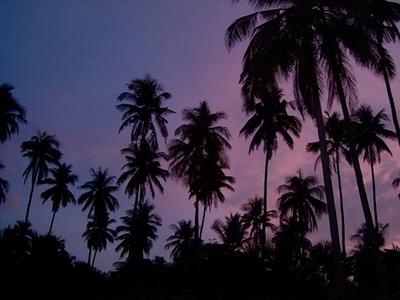 Picture perfect sundown
