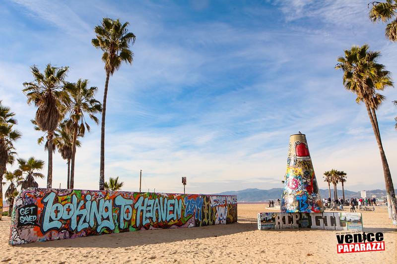 Venice Beach Fun-106.jpg