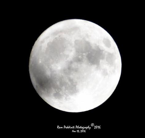 Nature - Moon Shots