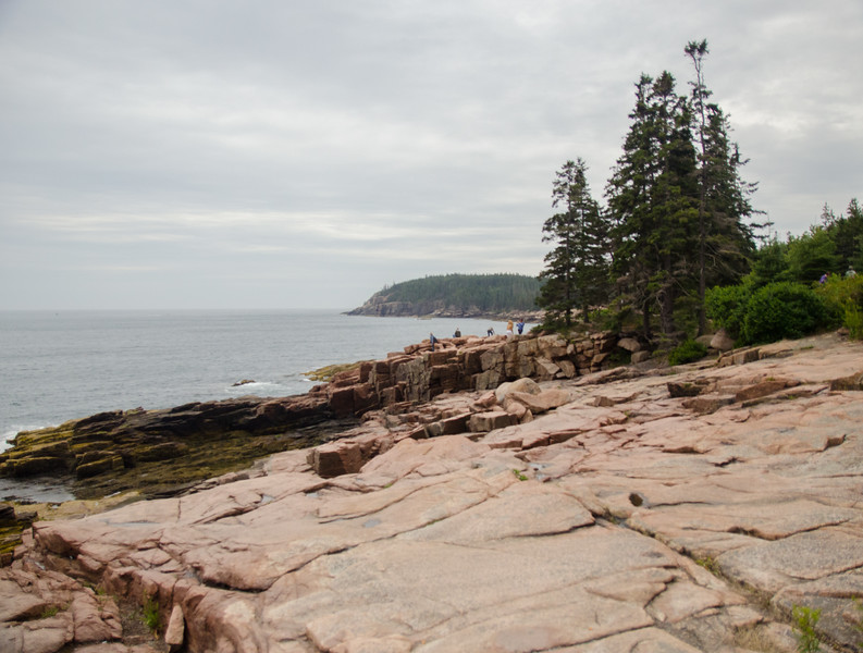 Acadia Nat'l Park-Terry's - July 2017-163.jpg